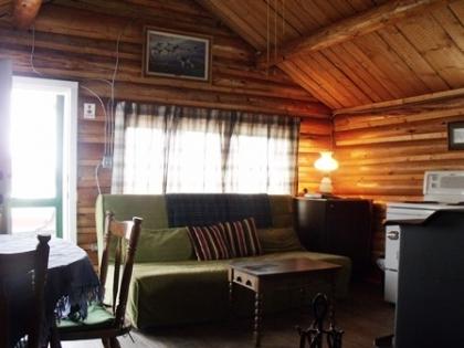Birdwatcher Livingroom