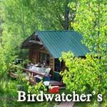 The Bird Watcher's Cabin