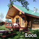 The Loon Cabin