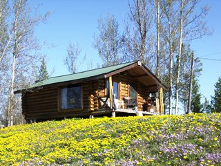 camper's cabin in spring