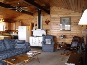 livingroom new 1